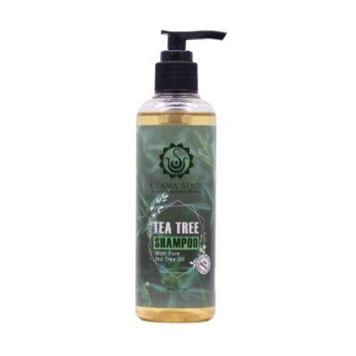 茶樹洗髮精